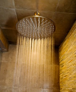 rain shower fixture santa clarita valley interior designer