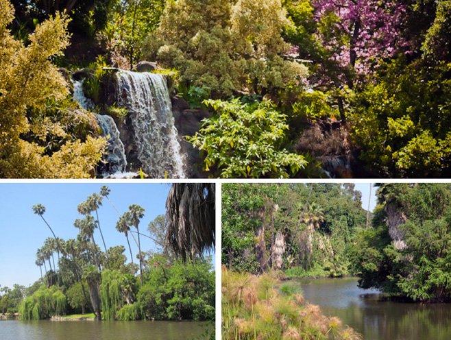 Views of Baldwin Lake, Prehistoric Forrest and Meyberg Waterfall.