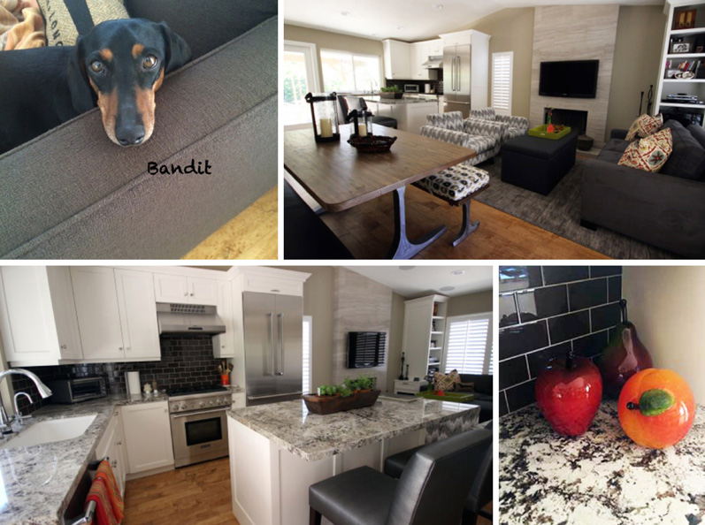 Collage of Bandit & his home's kitchen/great room remodel & design details.